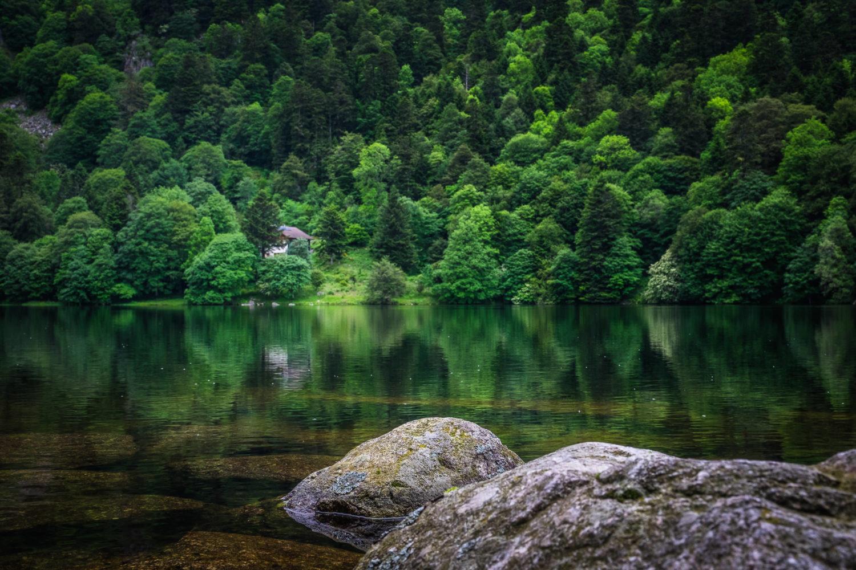 Lac de Schiessrothried mit Bäumen im Hintergrund
