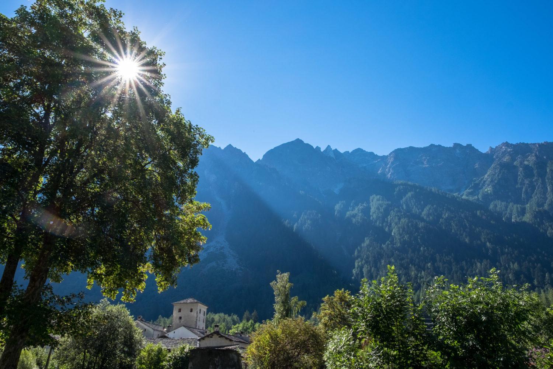 Sonnen scheint durch Äste eines Baums mit Bergen im Hintergrund