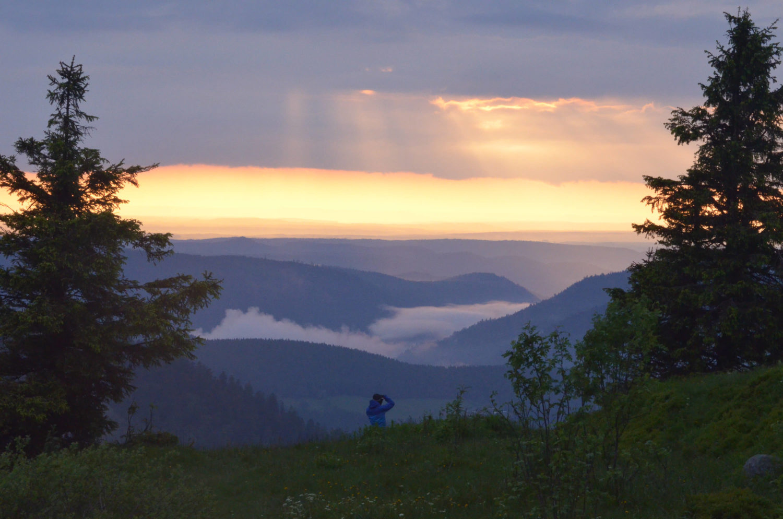 Fotograf fotografiert Sonnenuntergang über Waldebene