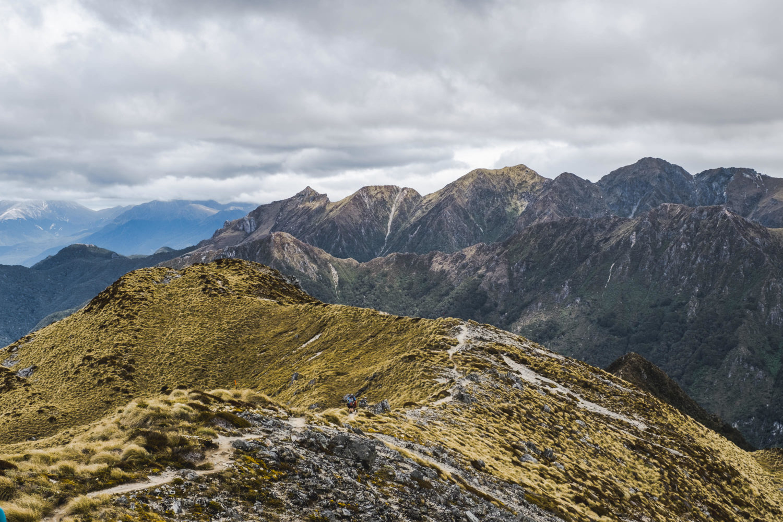 Pfad über einen Bergrücken auf dem Kepler Track