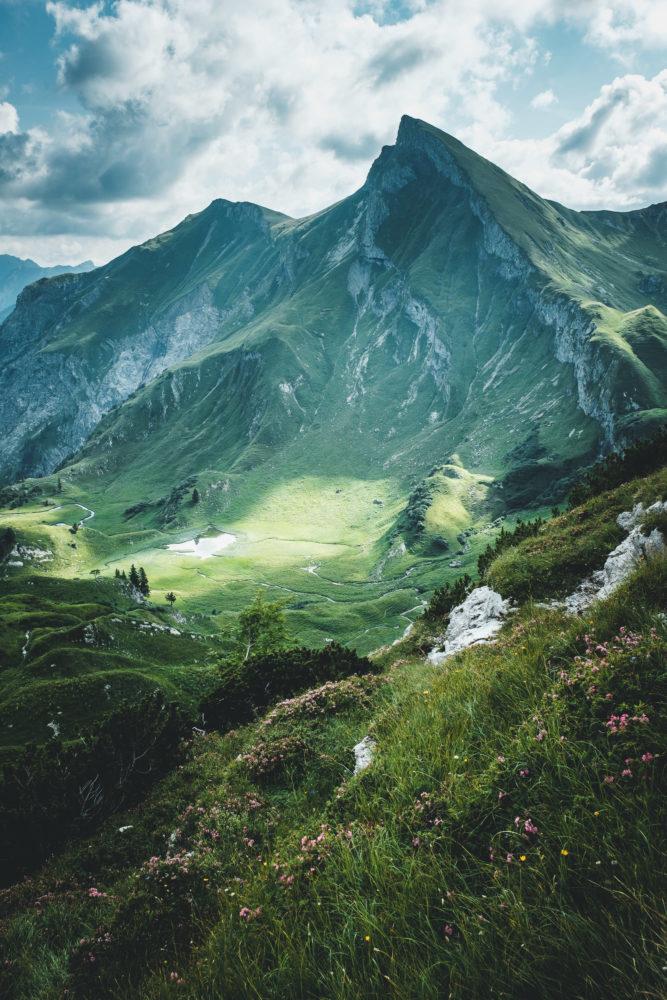 Bergwiese mit steilem Berghang im Hintergrund