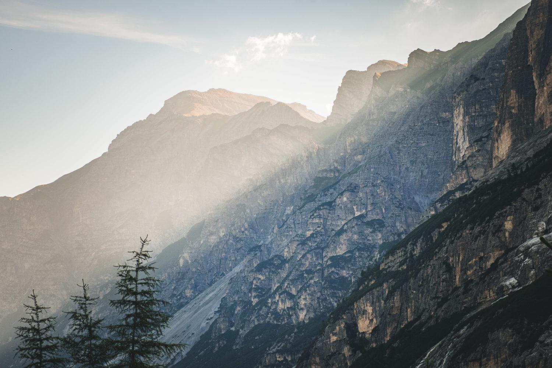 Morgenlicht fällt schräg über die Bergkuppe mit Tannen im Vor