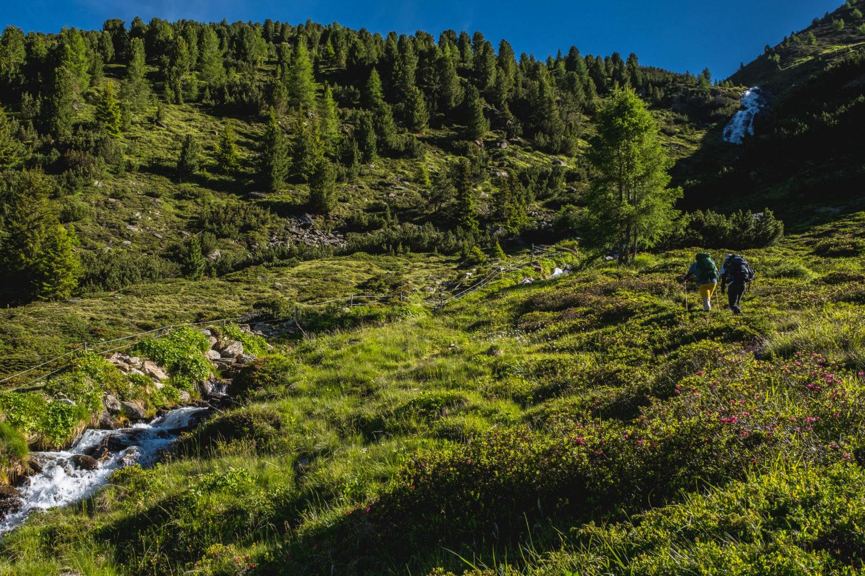 Zwei Wanderer gehen in einer Graslandschaft den Berg hinauf