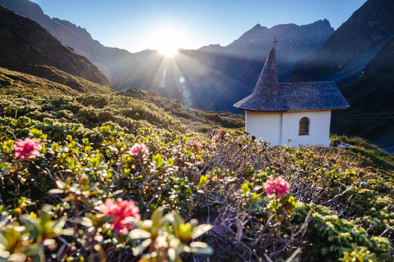 Alpenrose und Bergkapelle beim Sonnenaufgang